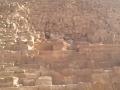 Leisy at the pyramids